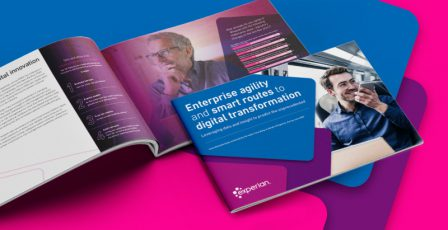The Experian 2020 research commissioned to Forrester